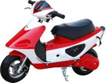 Discipline Pocket-Bike - Tout Sur La Moto